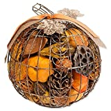 Harvest Blossom Pumpkin Wire Potpourri (Pack of 4)