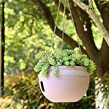 Garden Flower Pots - 3L Indoor Outdoor Plastic Bowl Shape Self Watering Planter Pots with Hanging Chains Hook (White)