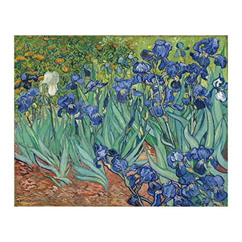 Van Gogh Iris (Van Gogh - Irises Poster (30x24)  PSA010750)