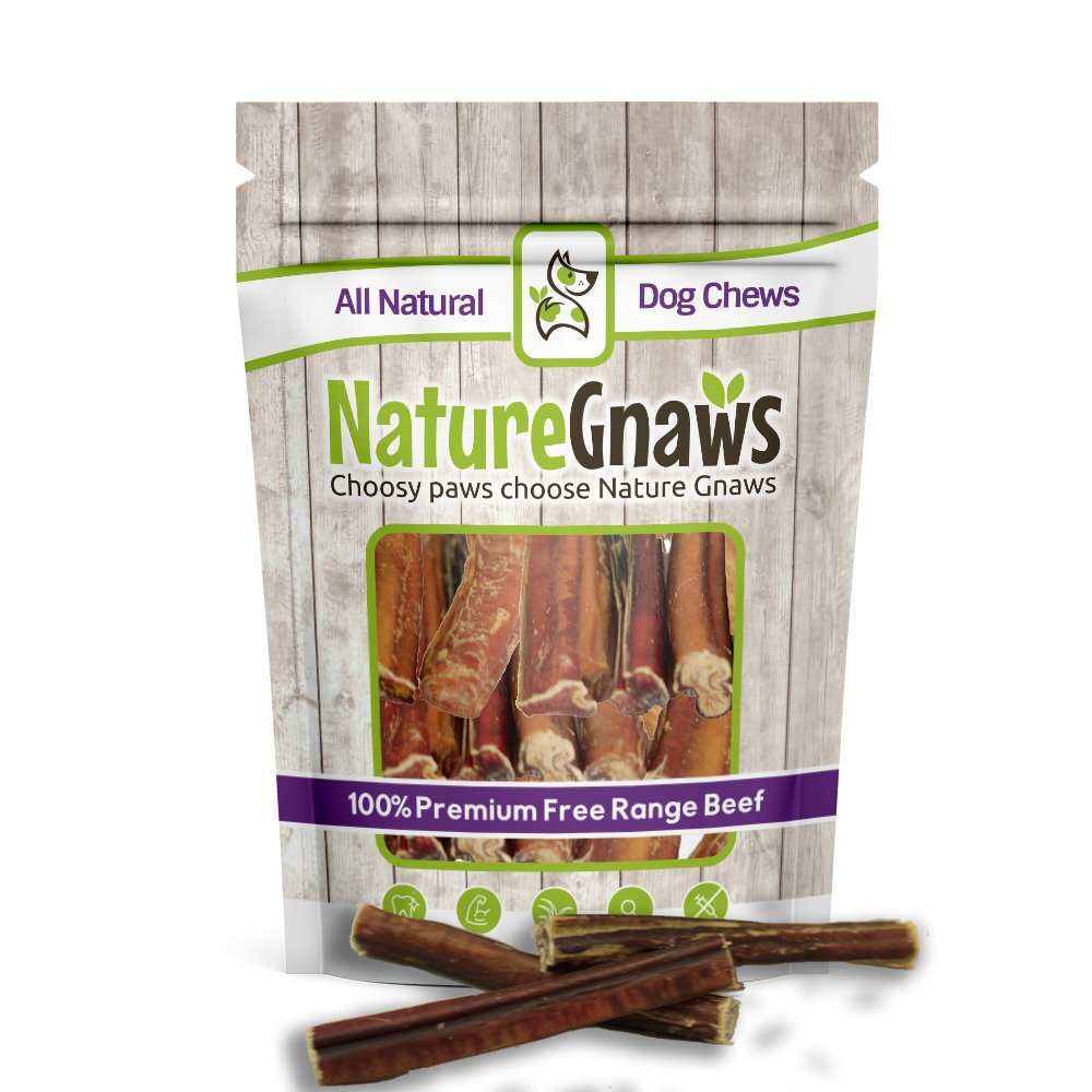 Nature Gnaws Jumbo XL Bully Sticks 5-6 inch (6 Pack) - 100% All Natural Grass-Fed Free-Range Premium Beef Dog Chews - Our Longest Lasting Bully Stick for Large Breeds