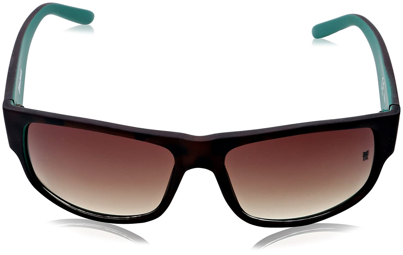 bd61124295c6 FENCHURCH Men's Plastic Wrap Sunglasses, Brown (Matt Tortoise), One Size:  Amazon.co.uk: Clothing