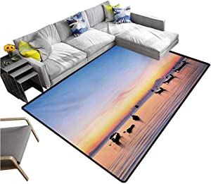 Fishing Large Area Rugs Sunset on Sea with Silhouette Ships at Suratthani Bay Relaxation Art Entryway Rug Blue Yellow Coral (5'x8')