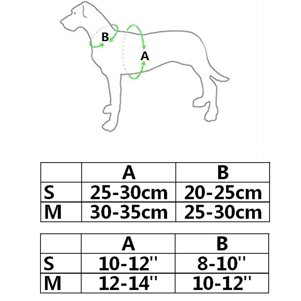 LA VIE Arneses Adorable para Perritos Incluye 120CM de Correa Arn/és Chaleco Suave para Mascotas Peque/ñas Chaleco para Perros Accesorios Bonitos para Gatos y Perros Peque/ños Cachorros M Rosa