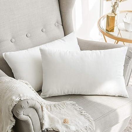 MIULEE Confezione da 2 Federe in Velluto Copricuscini Decorativi Fodere  Quadrate per Cuscino per Divano Camera da Letto Casa Auto 30X50cm Bianco  Puro