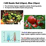 LED Grow Light for Indoor Plants Growing Light