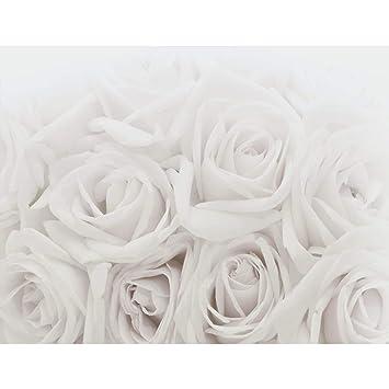 Fototapeten Blumen Rosen 352 x 250 cm - Vlies Wand Tapete Wohnzimmer ...