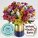 Christmas Lilies - Christmas Floral Arrangements - Christmas Flower Bouquets - Christmas Centerpieces - Christmas Gift Ideas 2017 - Flowers by The Shopstation