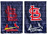 Team Sports America Suede St Louis Cardinals Glitter Logo Garden Flag, 12.5 x 18 inches