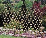 MGP Expandable Bamboo Pole Trellis