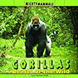 Gorillas, Lucy Sackett-Smith, 1404281045