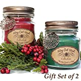 Scented Candles (2-PACK) with Hot Apple Cider and Winterberry Pine - Jar Candles Gift Sets - Great Winter and Holiday Candles- Natural Soy Wax Blend with Premium Fragrance Oil - Made in USA