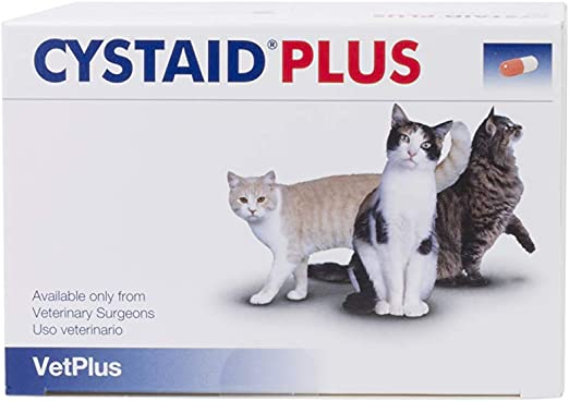 VetPlus Cystaid Plus - Complemento Dietético para Gatos con Cistitis Idiopática, 240 Capsulas: Amazon.es: Productos para mascotas