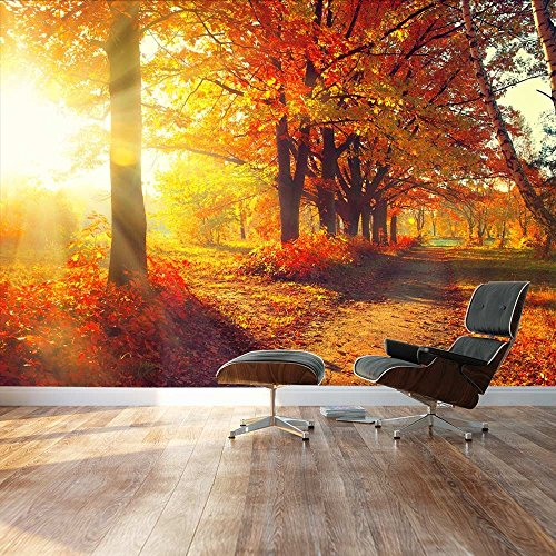 Large Wall Mural Beautiful Autumn Landscape Scenery of Red Maple Trees in the Morning Vinyl Wallpaper Removable Decorating