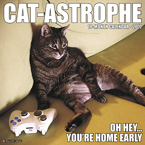 Cat-Astrophe 2017 Wall Calendar 61wifppfK0L