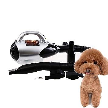 MAL Máquina sopladora de Agua silenciosa específica para Mascotas, secador de Pelo para Perros, secador de Alta Potencia, Perro Grande, Cabello Dorado, ...