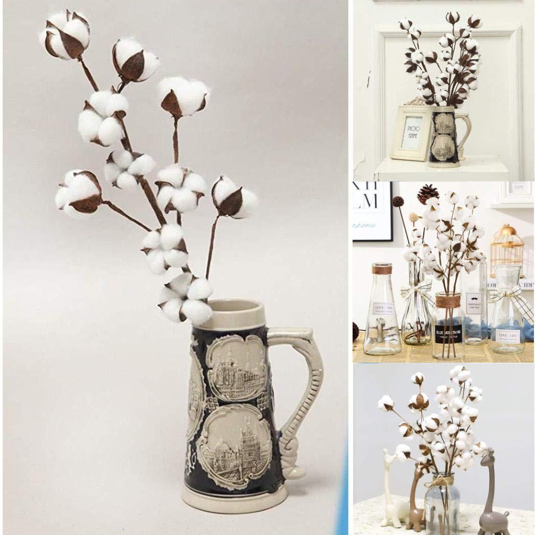 Kasien Cotton Stems Flower,21 inch Naturally Dried Cotton Stems Farmhouse Style Artificial Flower Filler Floral Decor (White)