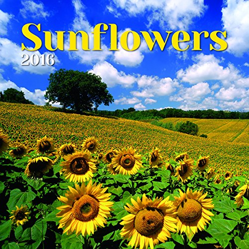 Turner Sunflowers 2016 Wall Calendar (8940054)