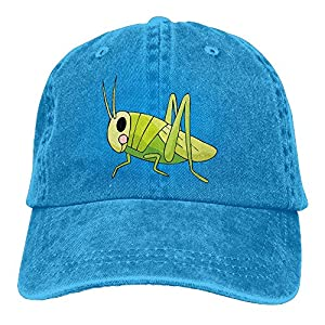 Zwd23yyj Hat Snap-Back Hip-Hop Cold Eye Grasshopper Cap Baseball Hat Head-Wear Cotton Trucker Hats Royalblue