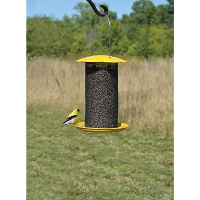 Songbird Essentials Mammoth Yellow Thistle Feeder : Garden & Outdoor
