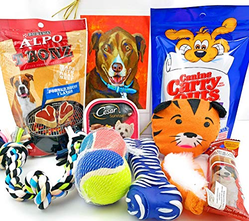 Dog Gift Box Basket for A Favorite Canine/Fur Baby - Send These Treats and Toys to a Furry Pet Friend! Great for Christmas, Birthdays, Get Well/Surgery Recovery. ()