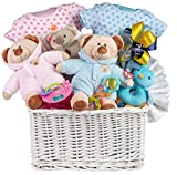Twins Baby Gift Basket by Pellatt Cornucopia with Toys, Blankets and Clothes