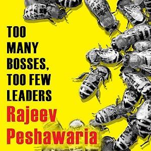 Too Many Bosses, Too Few Leaders Audiobook