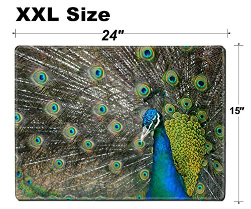 Luxlady Extra Large Mouse Pad XXL Extended Non-Slip Rubber Gaming Mousepad 24x15 Inch, 3mm thick Stitched Edge Desk Mat IMAGE ID 21089470 A beautiful blue necked peacock proudly displaying its feather ()