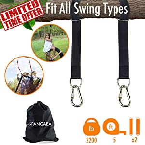 2018 New | Tree Swing Hanging Straps Kit Holds 2200 lbs 5-ft Extra Long | Safer Lock Snap Carabiner Hooks | Perfect for Tree Swing & Hammocks Carry Pouch Bag | Heavy Duty | Adjustable
