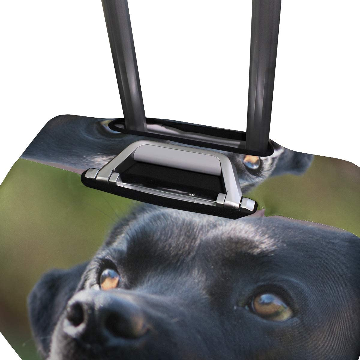 Travel Luggage Cover Labrador Black Pet Strange Suitcase Protector