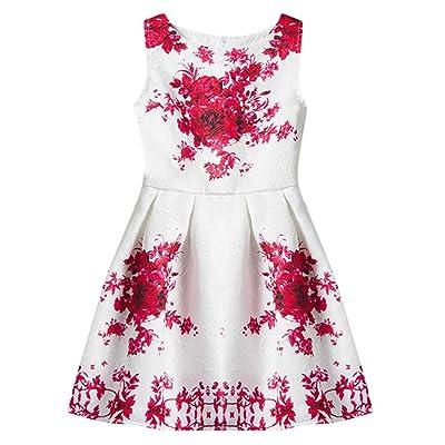 AFfeco Princess Dress FlowerGirls Sleeveless Dress