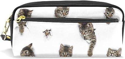 Mnsruu - Estuche de piel sintética con agujeros para gatos con pequeños compartimentos, organizador de bolígrafo con cremallera para estudiantes, niñas, niños: Amazon.es: Oficina y papelería