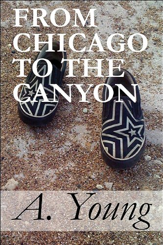 Download From Chicago to the Canyon pdf epub
