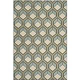 Safavieh Hampton Collection HAM512BD Dark Grey and Light Blue Indoor/Outdoor Area Rug (5'1″ x 7'7″)