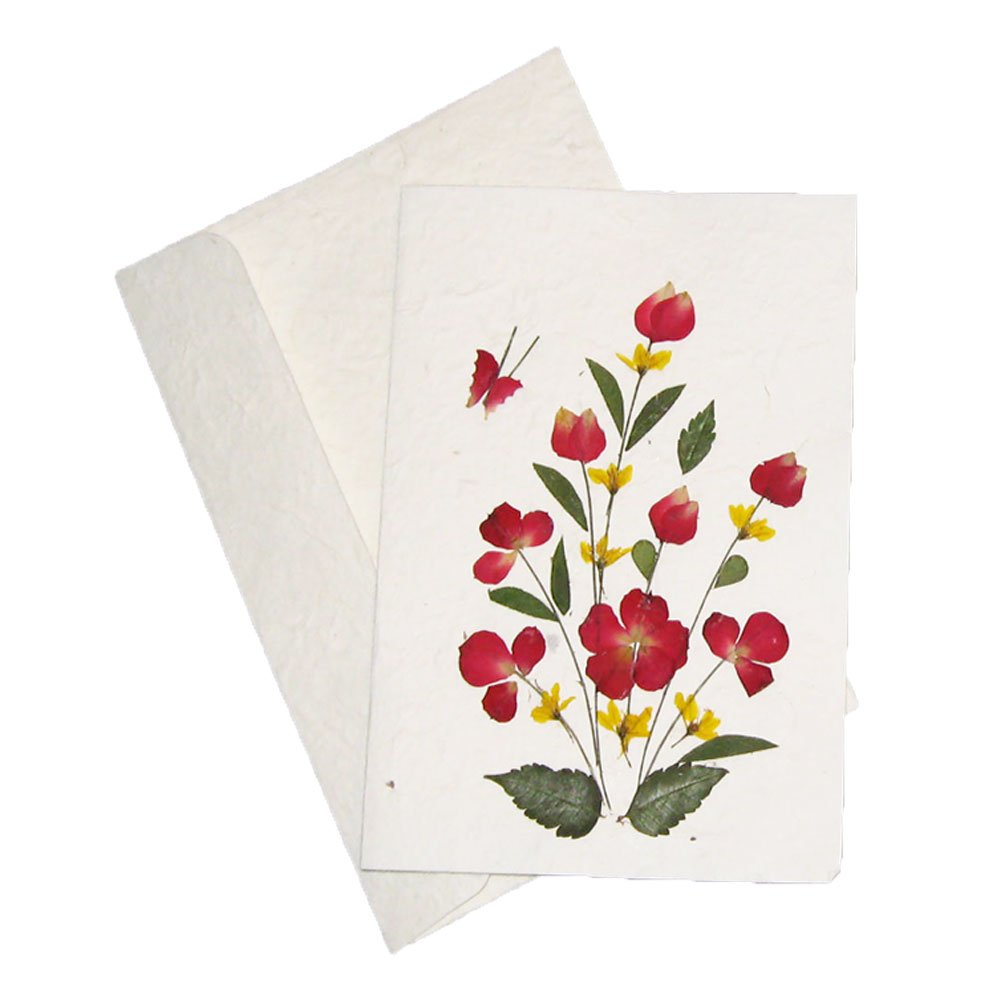 Amazon handmade pressed flower greeting card designs make amazon handmade pressed flower greeting card designs make great birthday anniversary and wedding gift card ideas assorted pack of 3 cards m4hsunfo