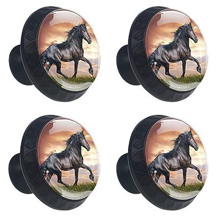Lorvies Arabian Horse Drawer Knob Pull Handle Crystal Glass Circle
