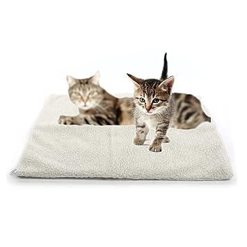 Gugutogo Auto Calefacción Perro Gato Protectora Cama para Mascotas Térmica Lavable Pas de Manta Eléctrica: Amazon.es: Productos para mascotas