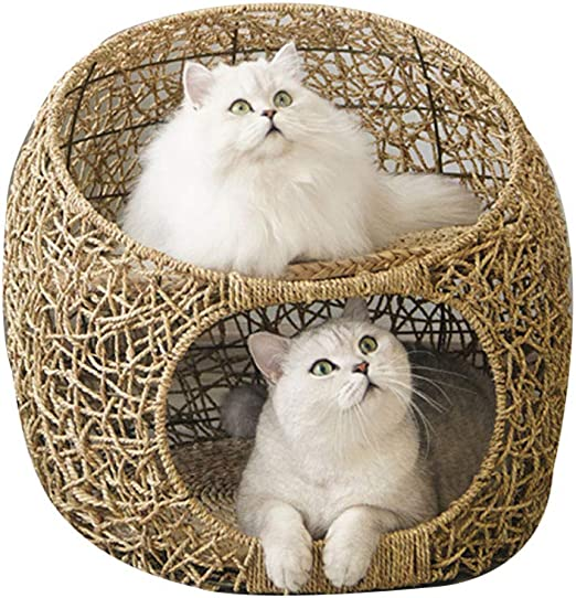 DYYTR 2 Capas De Mimbre Gato Cama Cesta Mascota Perro Durmiendo Casa con Cojín Suave Four Seasons Universal Cat House Gato Interior Suministros: Amazon.es: Hogar