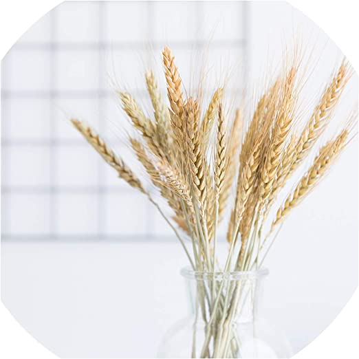 Natural Material Plant Stems Wheat Ear Grass Dried Flowers Bouquets Real Flower