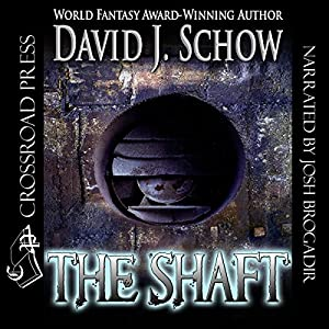 The Shaft Audiobook