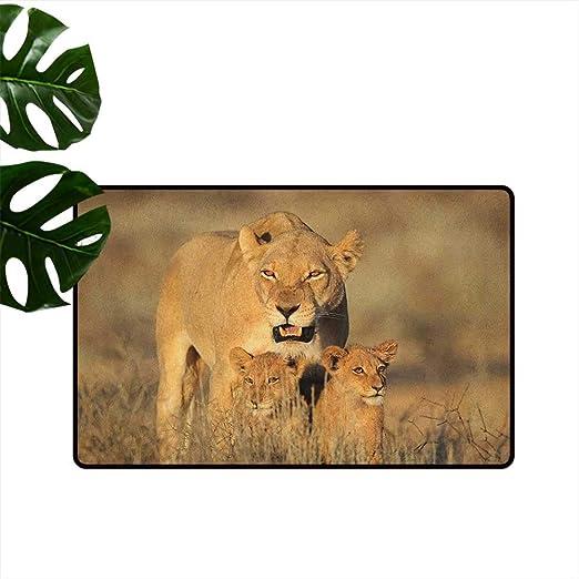 Anzhutwelve Safari, tapete de Navidad con ilustración del Rey León ...