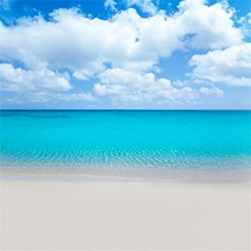 Amazon Com Aofoto 10x10ft Sea Beach Photography Background Blue Ocean Backdrop Clear Sky Clouds Kid Girl Lovers Boy Adult Artistic Portrait Wedding Seaside Holiday Photoshoot Studio Props Video Drape Wallpaper Camera