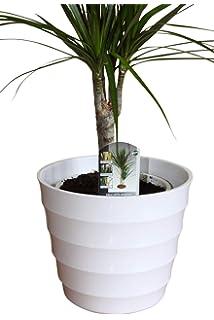 Grand Cache Pot De Qualite En Plastique Rigide Blanc Ideal Pour