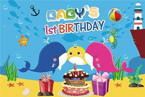 EdCott 5x3ft Fondo Fiesta cumpleaños bebé 1 bebé Vinilo ...