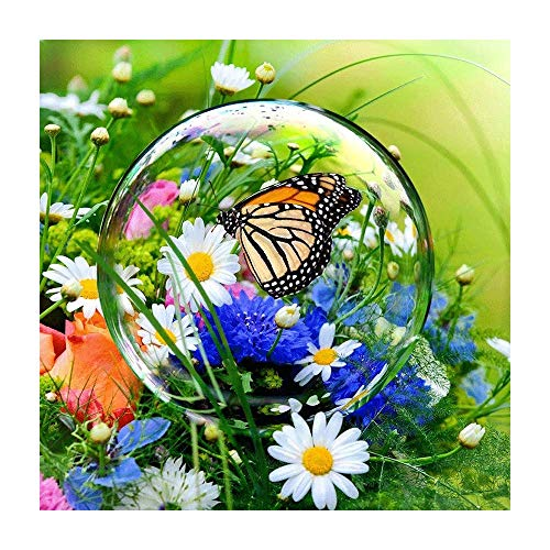 - 5D DIY Diamond Painting by Number Butterfly Dew Daisy Flower Cross Stitch DIY Diamond Stitch Kit Mosaic Full Round Crystal Diamond Embroidery Painting