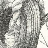 Strathmore 9-Inch by 12-Inch Spiral Sketch Book, 100-Sheet