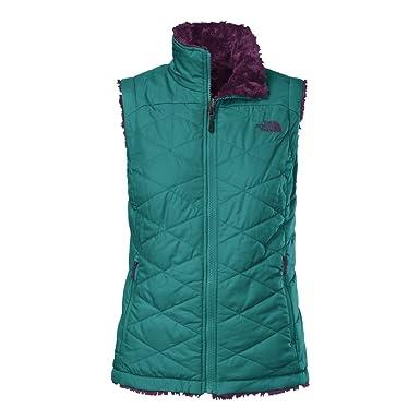 3c8069764617 The North Face Mossbud Swirl Vest Womens Fanfare Green Parlour Purple XS
