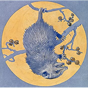 Nature Magazine - Opossum Hanging upside down under a Full Moon - Vintage Magazine Cover (12x18 Art Print, Wall Decor Travel Poster)