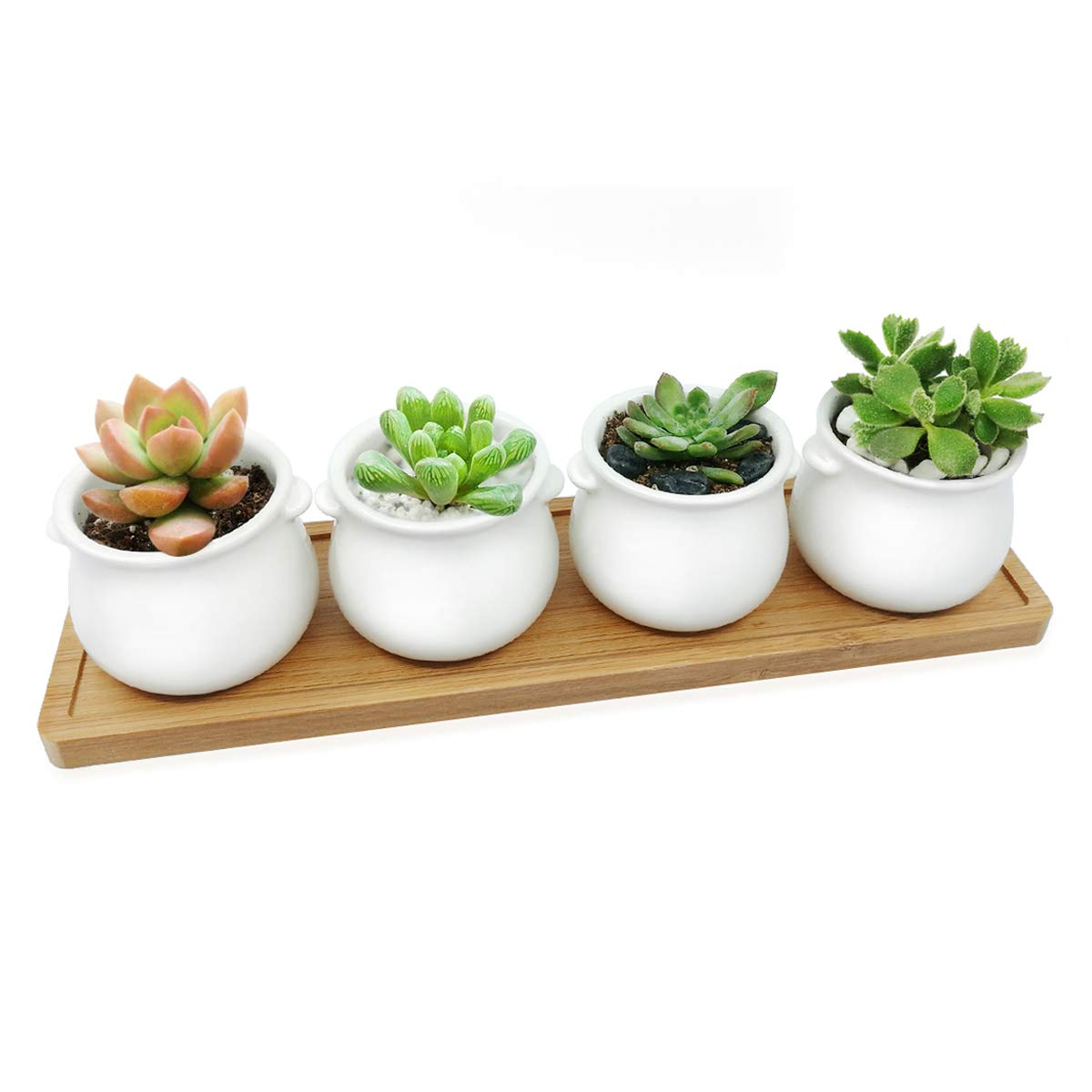 Mini Succulent Pots Set of 4 White Ceramic Ear Shaped Design Succulent Planter Pot with Drain Holes and Bamboo Tray for Indoor Outdoor Home Garden Kitchen Decor