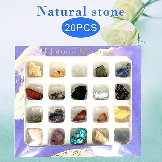 Decoración de minerales, 20 unids Irregular Caída Minerales Colección de Ornamentos de Arte Decoración Conjunto Regalos Regalos: Amazon.es: Hogar