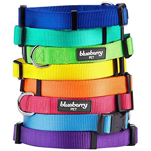 Blueberry Pet Hundehalsband Klassisch Einfarbig 1,5 cm S Basic Polyester Nylon Hundehalsband Langlebig - Mittel-Türkis, Passender Hundegeschirr & Hundeleinen erhältlich separate